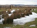 Otterburn Ranges above Ridleeshope - geograph.org.uk - 657166.jpg