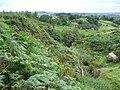 Overgrown Aika Sike - geograph.org.uk - 914070.jpg