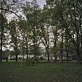 Overzicht achterzijde gezien door de bomen - Blaricum - 20408108 - RCE.jpg