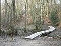 Owlbeech wood, Horsham, Sussex - geograph.org.uk - 637428.jpg