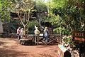 Pájara La Lajita - Oasis Park 27 ies.jpg