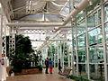 Palacio de Cristal, invernaderos de la Arganzuela (14536275336).jpg