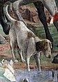 Palazzo schifanoia, salone dei mesi, 03 marzo (f. del cossa), borso alla caccia e amministrat. di giustizia 09 cane.jpg