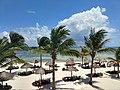 Palm Trees and Palapa On Beach.jpg