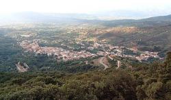 Panorama triei.png