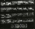 Paolo Monti - Servizio fotografico (Firenze, 1975) - BEIC 6359898.jpg