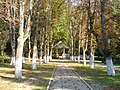 Parc 02 - panoramio.jpg