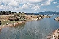 Parco Nazionale della Sila, Lago Cecita 1.jpg