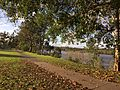 Parklands and walkways along Brisbane River at Graceville 02.jpg