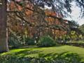 Parque Fuente del Berro Variedad Arboles.png
