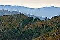 Parque Nacional da Peneda-Gerês (10248246035).jpg