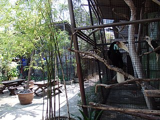Pata Zoo private zoo in Bangkok, Thailand