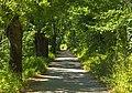 Pathway to Crespi d'Adda.jpg