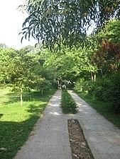 Pathways in Dharmasagar Park 4.JPG