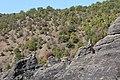 Pcinja river valley 21.jpg