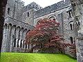 Penrhyn Castle Wales - panoramio (6).jpg