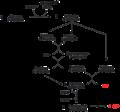 Pentosephosphatweg G3P.png