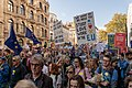 People's Vote March 2018-10-20 - We want to be able to study, love, and work in the EU.jpg