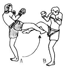 Boxing Techniques Pdf