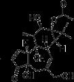 Phorbol 13-acetate.png
