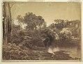 Photograph, Evening, 19th century (CH 18189723).jpg