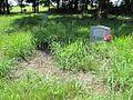 Pilgrim Rest M B Church Cemetery Wappanocca AR 2013-06-29 007.jpg