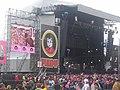 Pinkpop 2007 - Iggy Pop.jpg