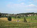 Podlaskie - Sokółka - Janowszczyzna pano 20110918 01.JPG