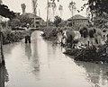 Poplava u Pirotu 01.jpg