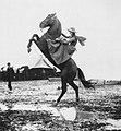 Primoli, Giuseppe - Die Amazone Annie Oakley (Zeno Fotografie).jpg