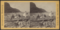 Profile view of Palisades, looking north, from Robert N. Dennis collection of stereoscopic views.png