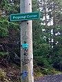 Proposal Corner (43345639360).jpg