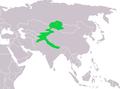 Prunella himalayana dist.png