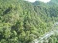 Quebrada de Los Sosa, Reserva Natural Los Sosa, Tucumán, Argentina - panoramio.jpg