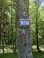 Quinebaug-Pachaug Connector Trail Sign at junction at Phillips Pond.jpg