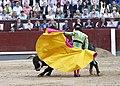 Quite por gaoneras de Fandiño, en Madrid, 26 mayo 2016.jpg