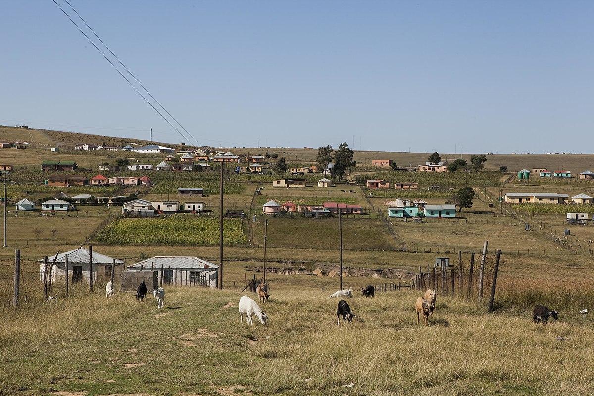 Facts & Figures: Rural Women and the Millennium Development Goals