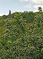 Rüdesheim-190.JPG