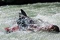 Red Bull Jungfrau Stafette, 9th stage - kayaking (9).jpg