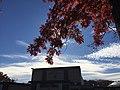 Red Sparta - panoramio.jpg