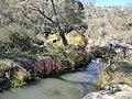 Rendezvous Creek.jpg