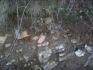 Rendzina - Rendzina soil (Castelltallat)