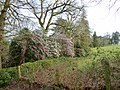 Rhododendrons or Camellias at Leonardslee Gardens (geograph 2310158).jpg