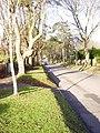 Ringley Park Avenue, Reigate - geograph.org.uk - 108986.jpg