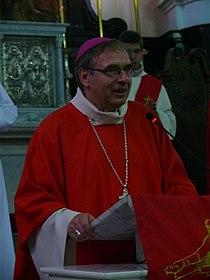 Rio de Janeiro - WYD 2013 - Mgr Jérôme Beau - 2.jpg