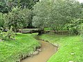 River Frome at Rowden Mill - geograph.org.uk - 955496.jpg