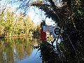 River Medway 04.jpg