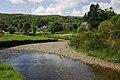 River Scene - geograph.org.uk - 444575.jpg