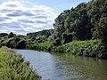 River Stort, Roydon (25879796697).jpg