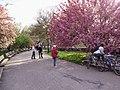 Riverside Park 03.jpg